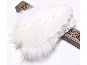 Peří Husa kudrnatá bílá