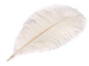 Pštrosí pera bílé 01