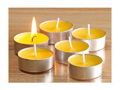 Citronella čajové svíčky 15 kusů