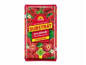 substrat forestina na jahody a jiné drobné ovoce