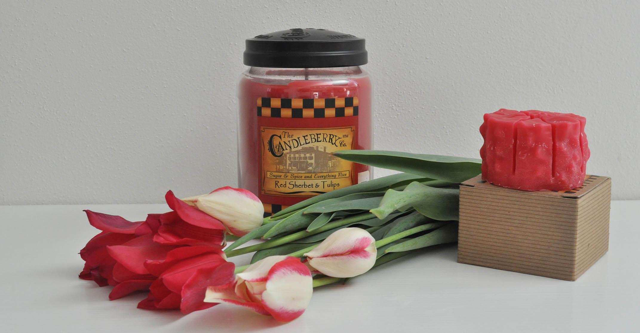 Red sherbert and Tulips
