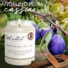angelino plum cassia scented candle 39400909 b647 4561 a48f 3053a64c6d5d 1024x1024@2x