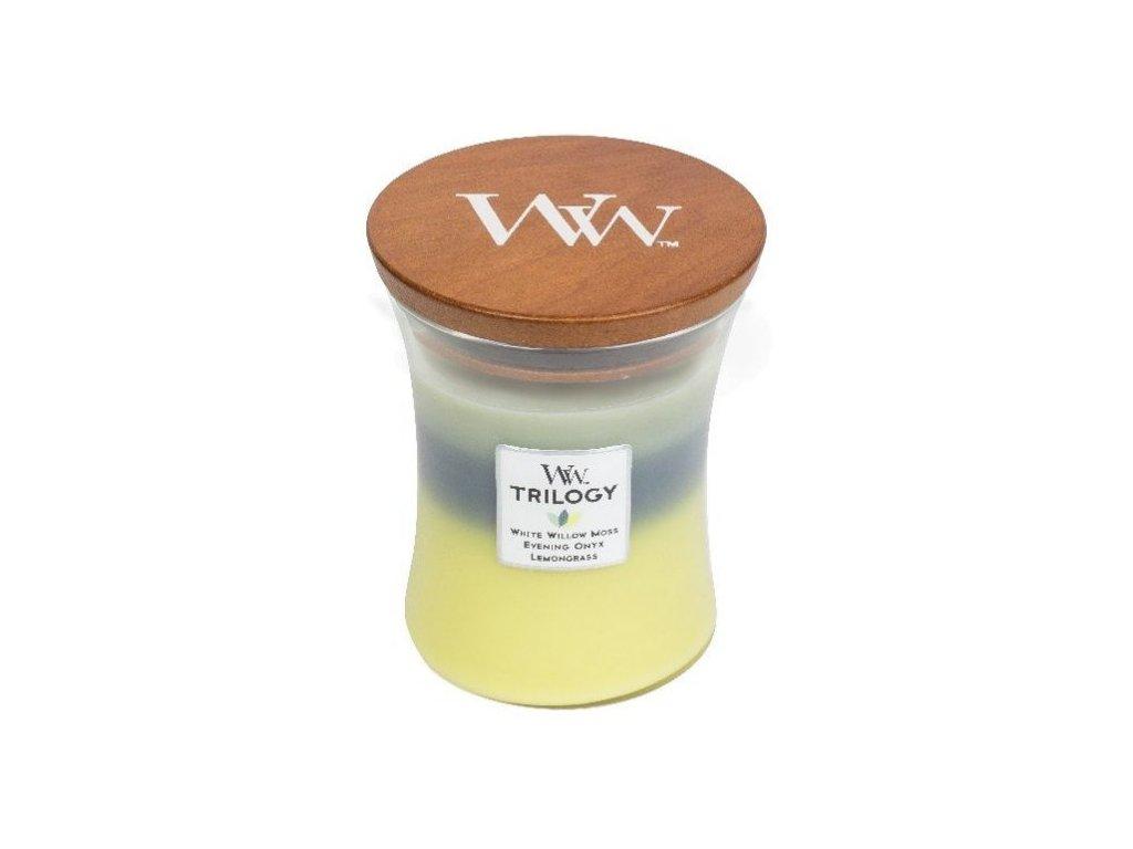 white willow moss, evening onyx, lemongrass 2