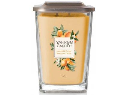 kumquat and orange