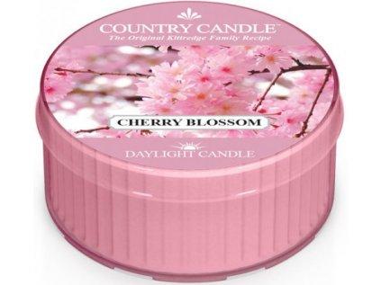 Country Candle - vonná svíčka CHERRY BLOSSOM (Třešňový květ) 42 g