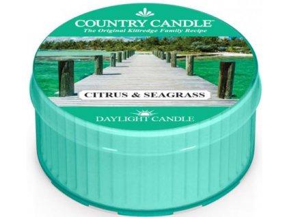 Country Candle - vonná svíčka CITRUS & SEAGRASS (Citrusy a chaluha) 42 g