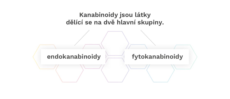 kanabinoidy_pages_1-2