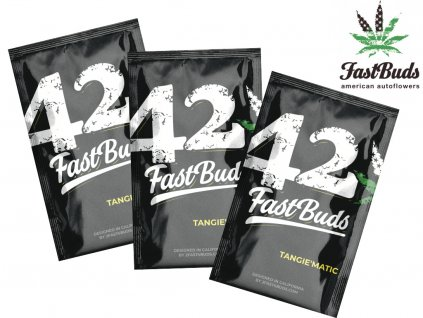 Tangie'Matic Auto | Fast Buds