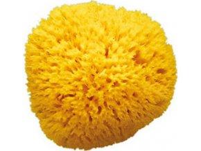 Hubka na umývání Honeycomb 10