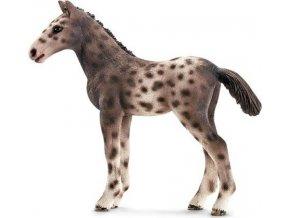 Schleich 13760 Hříbě knabstruperského koně