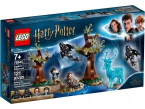 LEGO Harry Potter™ 75945 Expecto patronum