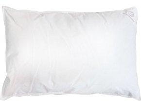 Dětský péřový polštář - 60x40cm