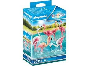70351 Flamingoschwarm 01 o