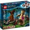 LEGO Harry Potter ™ 75967 Zapovězený les: Setkání Drápa a profesorky Umbridgeové