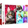Puzzle Šťastné kočky 1000 dílků