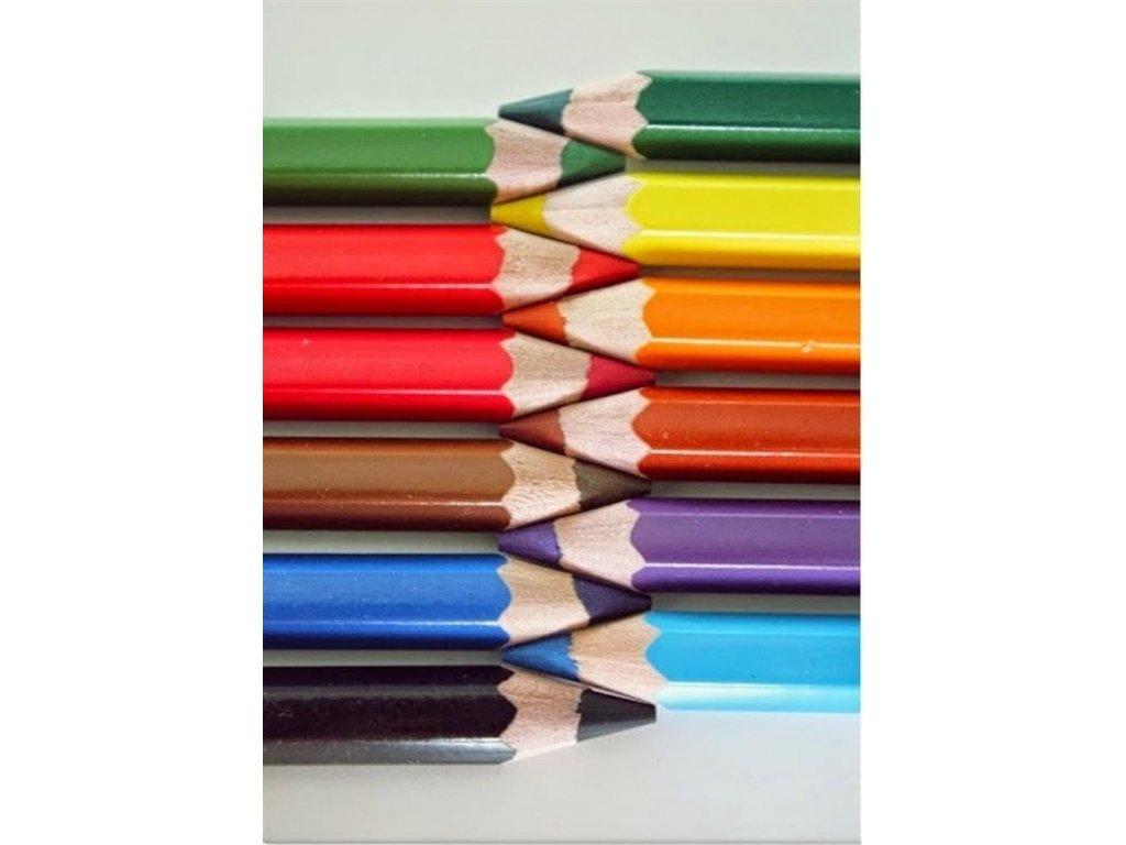 Koh-i-noor, OMEGA JUMBO, silné pastelky 3380, 12 ks od jednej farby (Varianta zelená - meadow green)