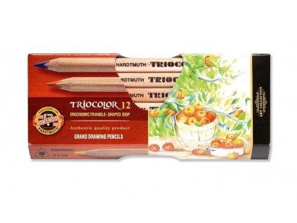 103764 koh i noor triocolor umelecke pastelove ceruzky 3152n 12 ks v sade