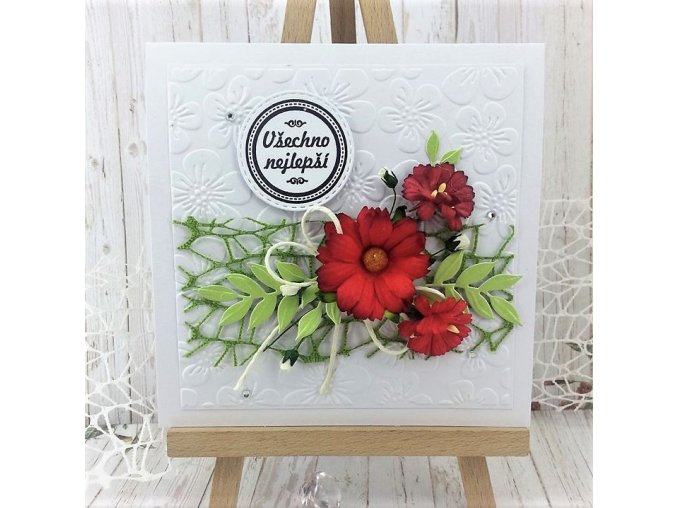 prani-narozeniny-svatek-kvetina-cervena