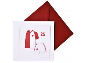 prani slavie dres pro slavistu fotbal