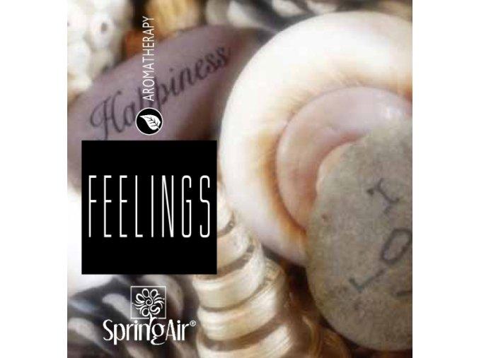 Aerospray Feelings 250 ml