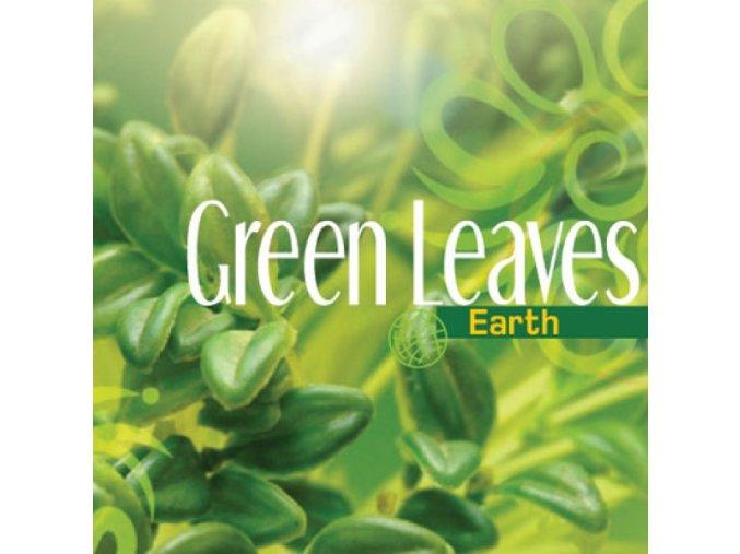 Aerospray Green Leaves 250 ml