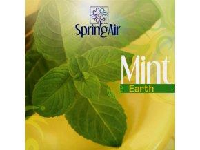 Aerospray Mint 250 ml