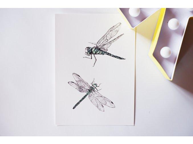 Pohlednice Vážky