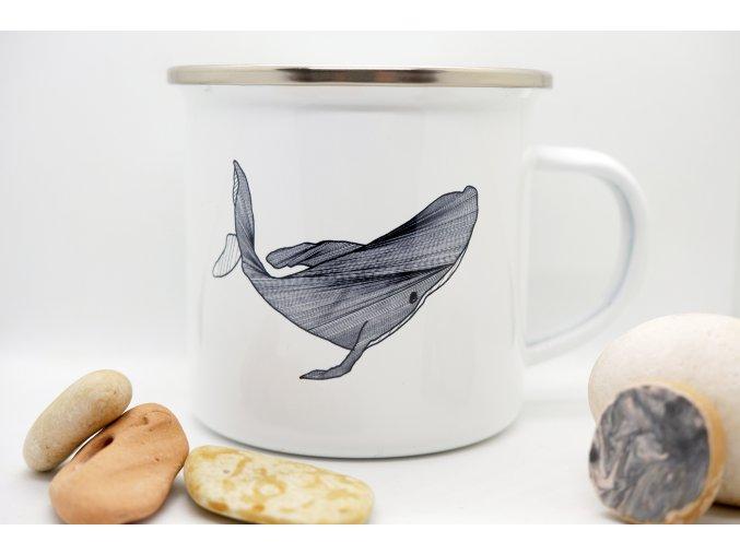 Plecháček Velryba
