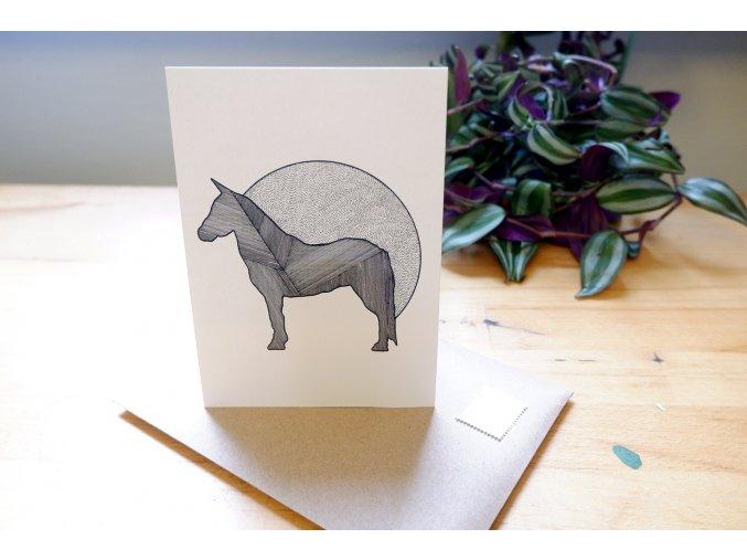 Pohlednice, obrázek - Kůň