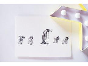 Pohlednice Tučňáci