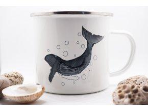 Velký plecháček Velryba