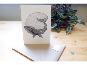 Obrázek, pohlednice - Velryba