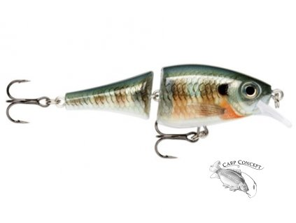 Rapala BX Jointed Shad 06