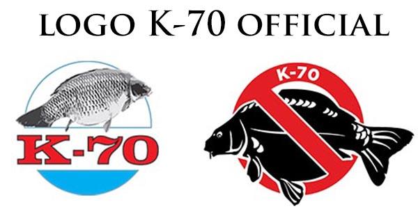 loga-k70-car