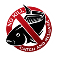 No Kill! Catch And Release