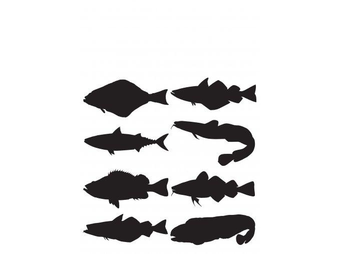 000217 samolepky ryby mořské komplet