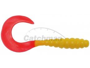 110505 twister ice fish 1