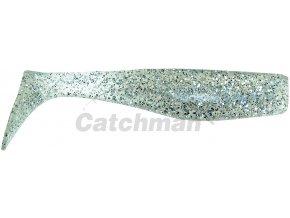 110115 ryba SD1B 02