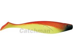 011078 vláčecí ryby 7