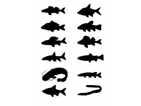 000214 samolepky ryby sladkovodní komplet