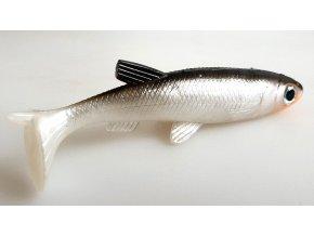 gumová b ryba