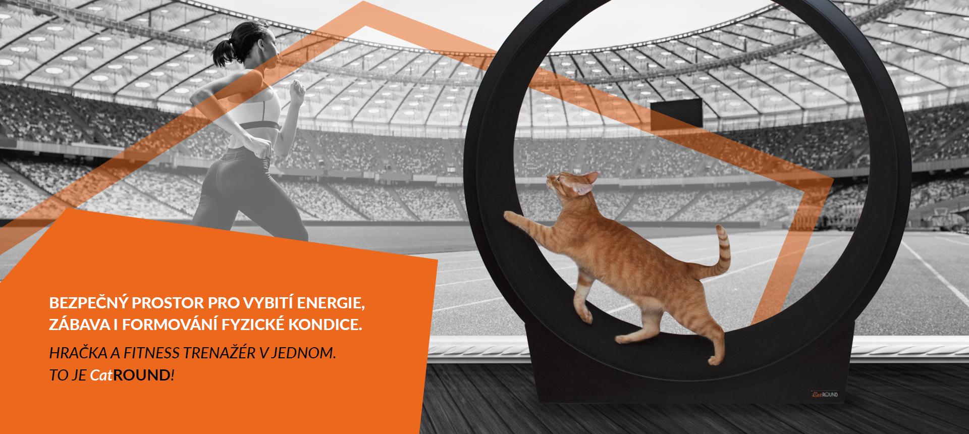Bezpečný prostor pro vybití kočičí energie, hračka a fitnes trenér v jednom