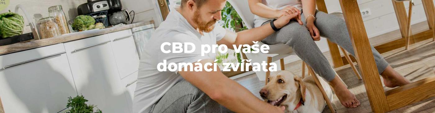 CBD pro vaše domácí zvířata