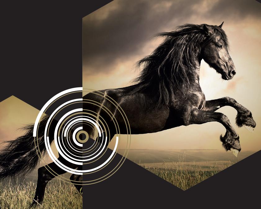 Léčba záchvatů u koně CBD olejem