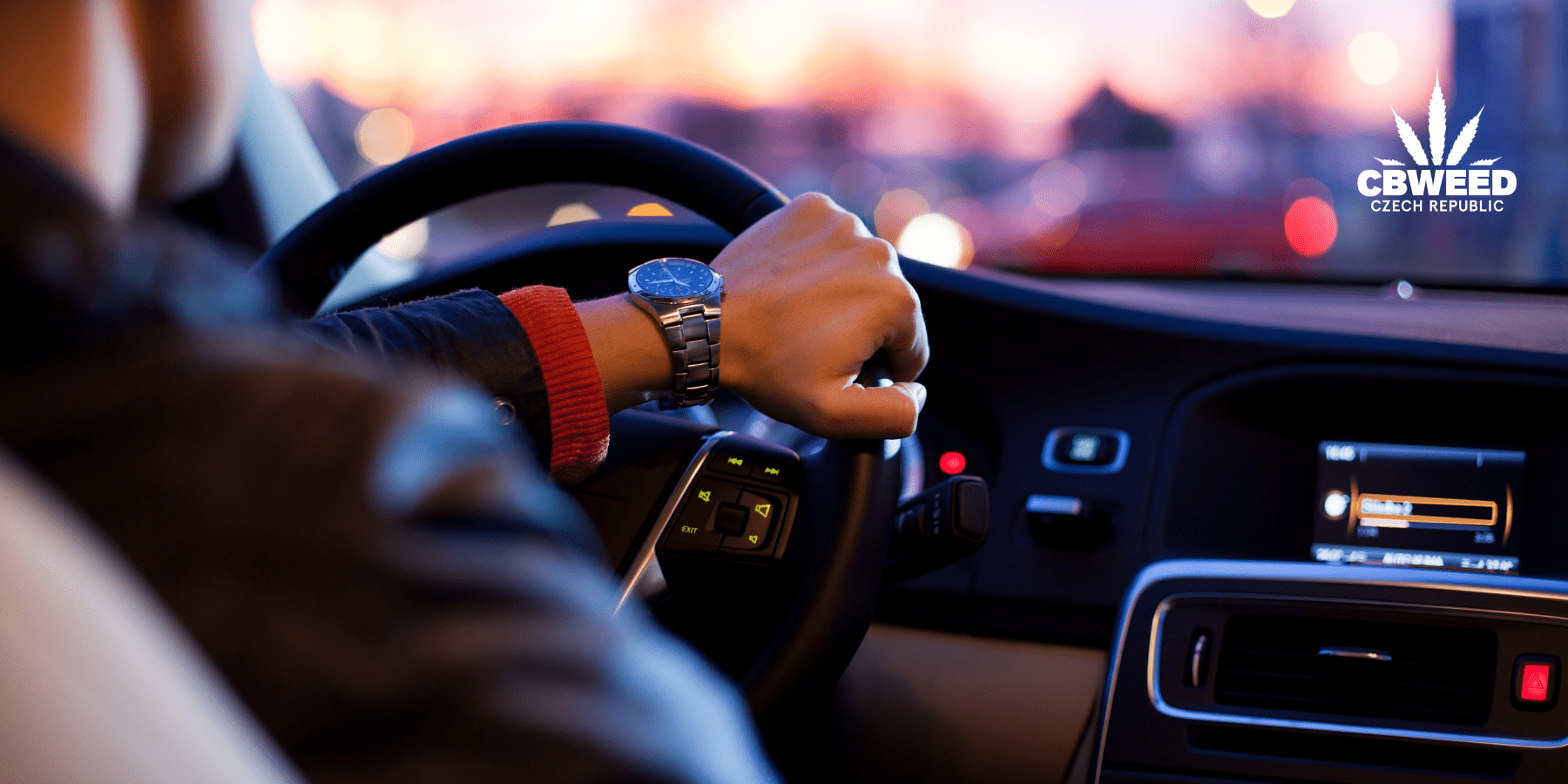 Je bezpečné používat CBD před řízením?