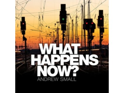 ANDREW SMALL - What Happens Now? (CD)