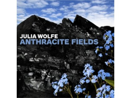 BAN ON A CAN ALL STARS - Wolfeanthracite Fields (CD)