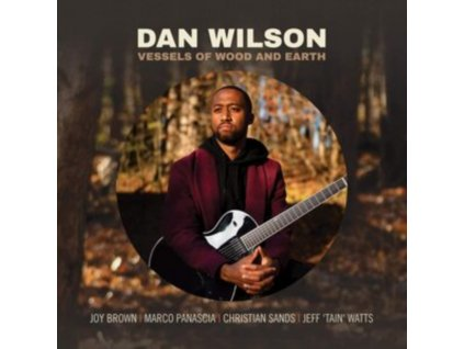 DAN WILSON - Vessels Of Wood And Earth (CD)