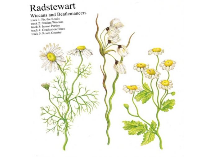 Radstewart - Wiccans and Beatlemancers (Music CD)