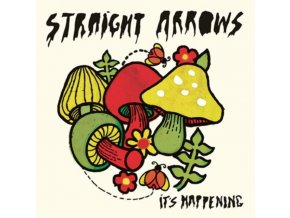 STRAIGHT ARROWS - ItS Happening (CD)